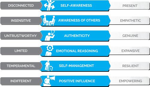 Genos Emotional Intelligence Inventory (Genos EI)